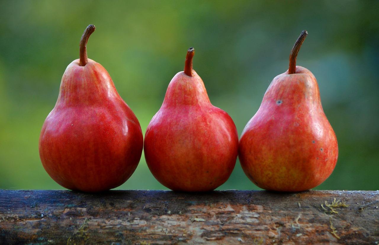pears-1159014_1280